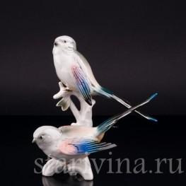 Фарфоровая статуэтка птиц Длиннохвостые синицы, Karl Ens, Германия, 1950 гг.
