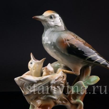 Фарфорвая статуэтка птиц Дрозд рябинник с птенцами, Muller & Co, Германия, пер. пол. 20 в.