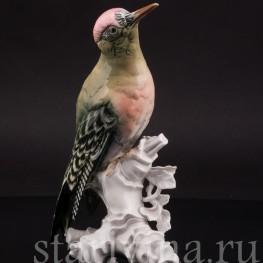 Фарфоровая статуэтка птицы Зеленый дятел Karl Ens, Германия, 1920-30 гг.