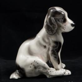 Сидящий щенок спаниеля, Royal Belvedere, Австрия