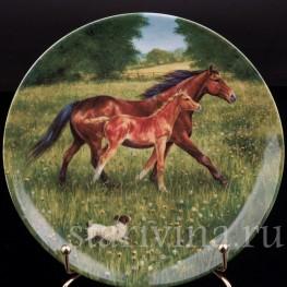 Декоративная фарфоровая тарелка Первая прогулка, Royal Worcester, Великобритания, 1991 г.